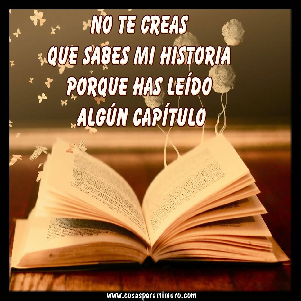 No creas conocer mi historia