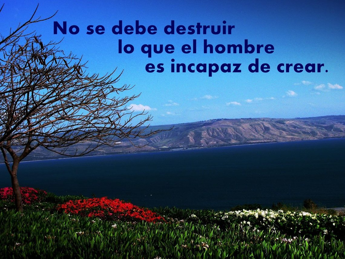 No destruir